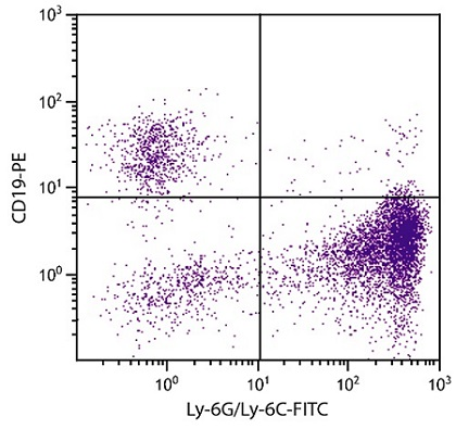 Flow Cytometry - Anti-Ly6g antibody [RB6-8C5] (FITC) (ab25024)