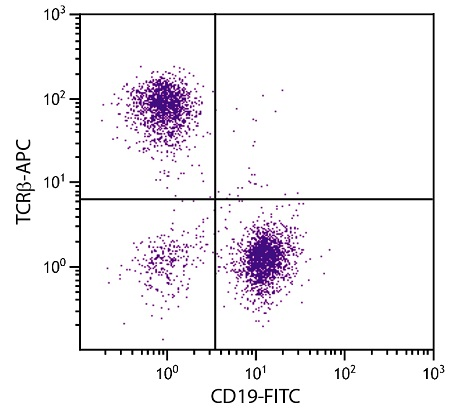 Flow Cytometry - Anti-TCR alpha + TCR beta antibody [H57-597] (Allophycocyanin) (ab25324)