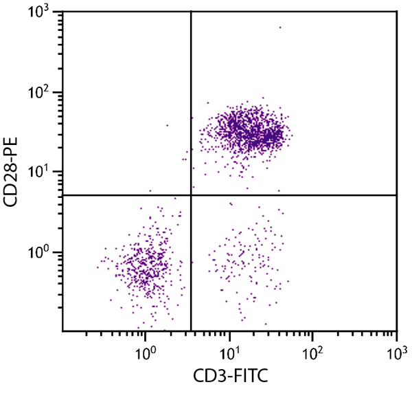 Flow Cytometry - Anti-CD28 antibody [AV7] (Phycoerythrin) (ab25426)