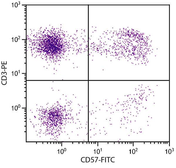 Flow Cytometry - Anti-CD57 antibody [NK-1] (FITC) (ab25605)