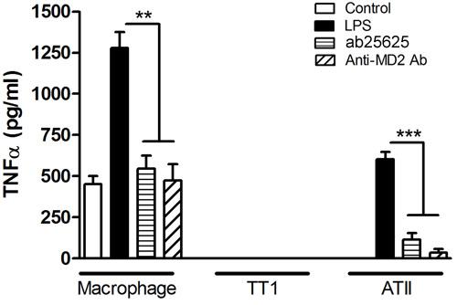 Neutralising - Anti-CD14 antibody [61D3] (ab25625)