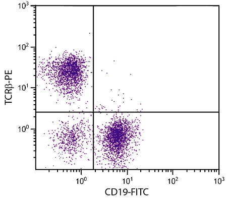 Flow Cytometry - Anti-TCR alpha + TCR beta antibody [H57-597] (Phycoerythrin) (ab25649)