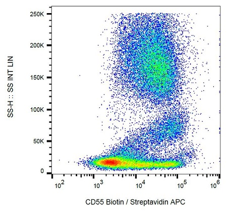 Flow Cytometry - Anti-CD55 antibody [MEM-118] (Biotin) (ab26005)