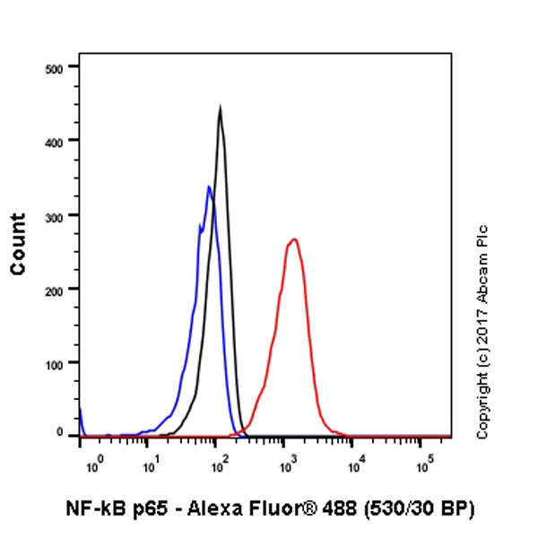 Flow Cytometry - Anti-NF-kB p65 antibody [E379] (ab32536)
