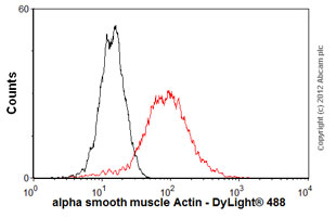 Flow Cytometry - Anti-alpha smooth muscle Actin antibody [E184] (ab32575)