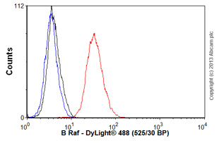 Flow Cytometry - Anti-B Raf antibody [EP152Y] (ab33899)