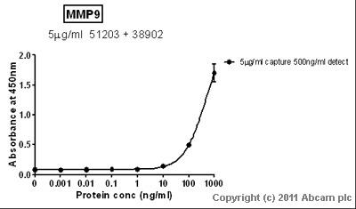 Sandwich ELISA - MMP9 antibody - Hinge region (ab38902)