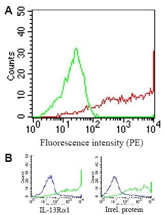 Flow Cytometry - Anti-IL13 receptor alpha 1 antibody [GM1E7] (ab39418)