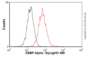 Flow Cytometry-Anti-CEBP Alpha antibody [EP709Y](ab40764)