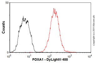 Flow Cytometry-Anti-FOXA1 antibody [2F83](ab40868)