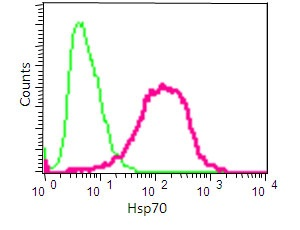 Flow Cytometry - Anti-Hsp70 antibody [EP1007Y] (ab45133)