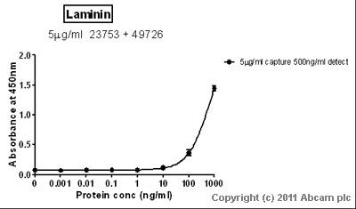 Sandwich ELISA - Anti-Laminin antibody [LAM-89] (ab49726)