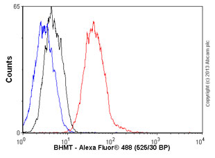 Flow Cytometry - Anti-BHMT antibody [clone 3D6] (ab52144)