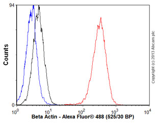 Flow Cytometry - Anti-beta Actin antibody [EP1123Y] (ab52614)