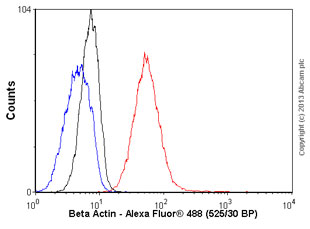 Flow Cytometry - Anti-beta Actin antibody (ab54724)