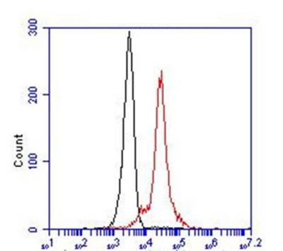 Flow Cytometry - Anti-AKT1 antibody (ab54752)