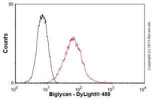 Flow Cytometry - Anti-Biglycan antibody (ab54855)