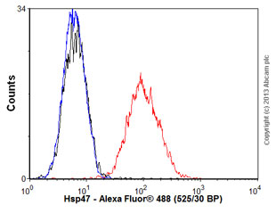 Flow Cytometry - Anti-Hsp47 antibody (ab54874)
