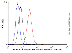 Flow Cytometry - Anti-SERCA3 ATPase antibody (ab54876)