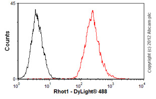 Flow Cytometry - Anti-MIRO1 antibody (ab55035)