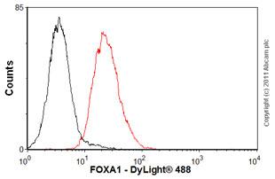 Flow Cytometry - Anti-FOXA1 antibody (ab55178)