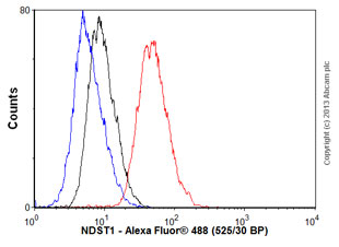 Flow Cytometry - Anti-NDST1 antibody (ab55296)