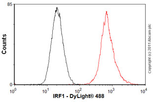 Flow Cytometry - Anti-IRF1 antibody (ab55330)