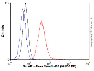 Flow Cytometry - Anti-Smad2 antibody (ab55478)
