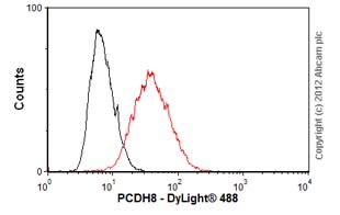 Flow Cytometry - Anti-PCDH8 antibody [6A8] (ab55507)