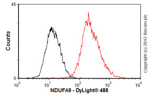 Flow Cytometry-Anti-NDUFA9 antibody(ab55521)