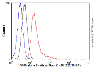 Flow Cytometry - Anti-S100 alpha 6 antibody (ab55680)