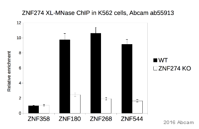 ChIP on chip - Anti-ZNF274 antibody - ChIP Grade (ab55913)
