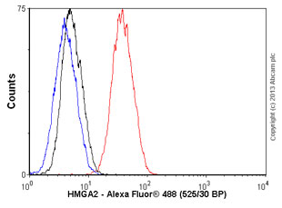 Flow Cytometry - Anti-HMGA2 antibody (ab56390)