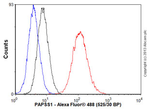 Flow Cytometry - Anti-PAPSS1 antibody (ab56398)