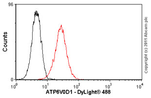 Flow Cytometry - Anti-ATP6V0D1 antibody (ab56441)