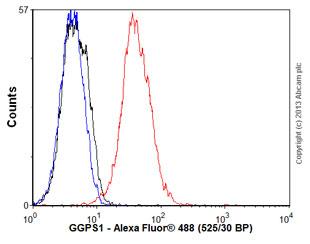 Flow Cytometry - Anti-GGPS1 antibody (ab56579)