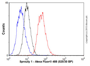 Flow Cytometry - Anti-Sprouty 1 antibody (ab56670)