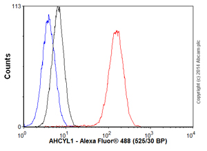 Flow Cytometry - Anti-AHCYL1 antibody (ab56761)