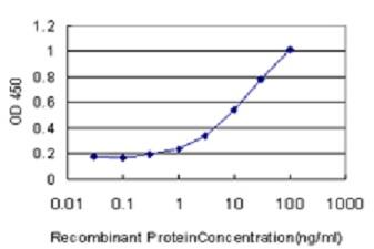 Sandwich ELISA - Anti-EMILIN1 [4A3] antibody (ab56936)