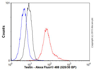 Flow Cytometry - Anti-Testin antibody (ab57292)