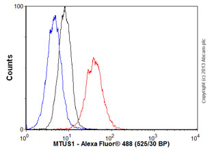 Flow Cytometry - Anti-MTUS1 antibody (ab57477)