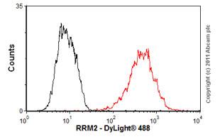 Flow Cytometry - Anti-RRM2 antibody [1E1] (ab57653)