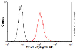 Flow Cytometry - Anti-Twist2 antibody (ab57997)