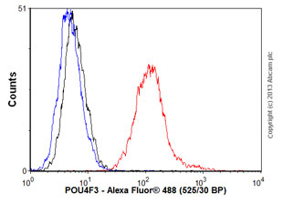 Flow Cytometry - Anti-POU4F3 antibody (ab58128)
