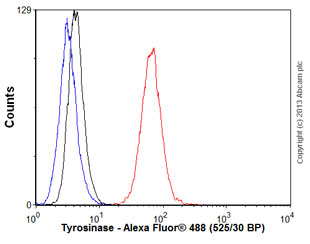 Flow Cytometry - Anti-Tyrosinase antibody (ab58284)
