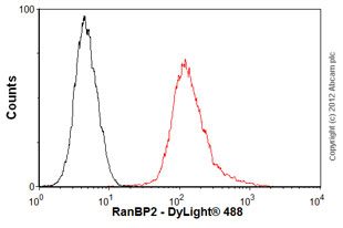 Flow Cytometry - Anti-RanBP2 antibody [mAbcam58385] (ab58385)