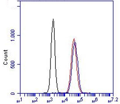 Flow Cytometry - Anti-ZO1 tight junction protein antibody (ab59720)