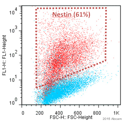 Flow Cytometry - Anti-Nestin antibody [3k1] (ab6320)