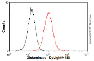Flow Cytometry - Anti-Glutaminase antibody (ab60709)