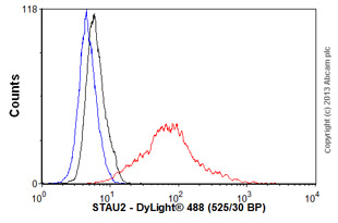 Flow Cytometry - Anti-STAU2 antibody (ab60724)